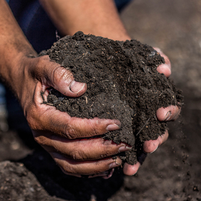 Landscape Compost Sacramento