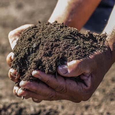 Organic Compost Sacramento