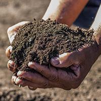 Organic Compost - Sacramento, CA